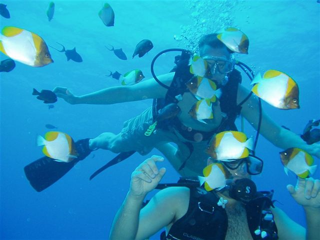 Byron & Ed surrounded by Pyramid Butterflyfish