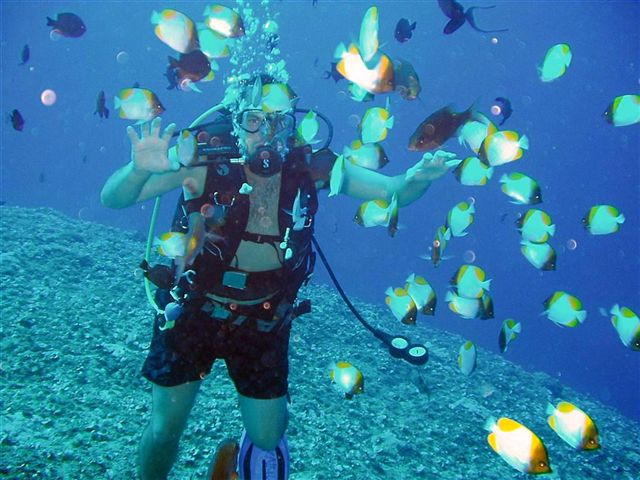 Ed at the Crevice with Redtooth Triggerfish & Pyramid Butterflyfish